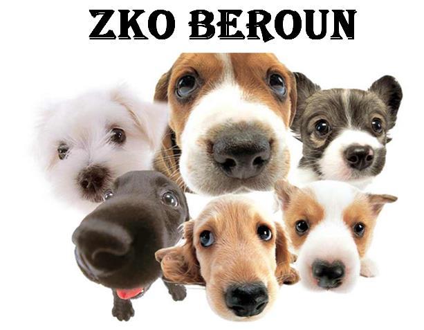 http://zkoberoun.websnadno.cz/logo_face.jpg